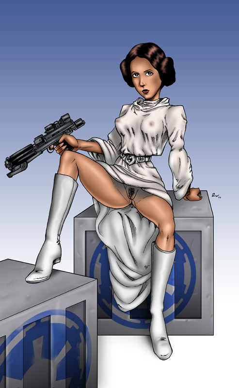 Star wars leia naked sex — pic 1