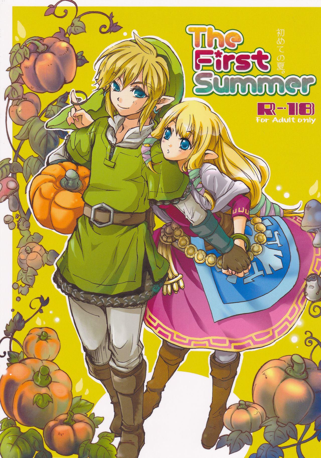 Zelda porno comics