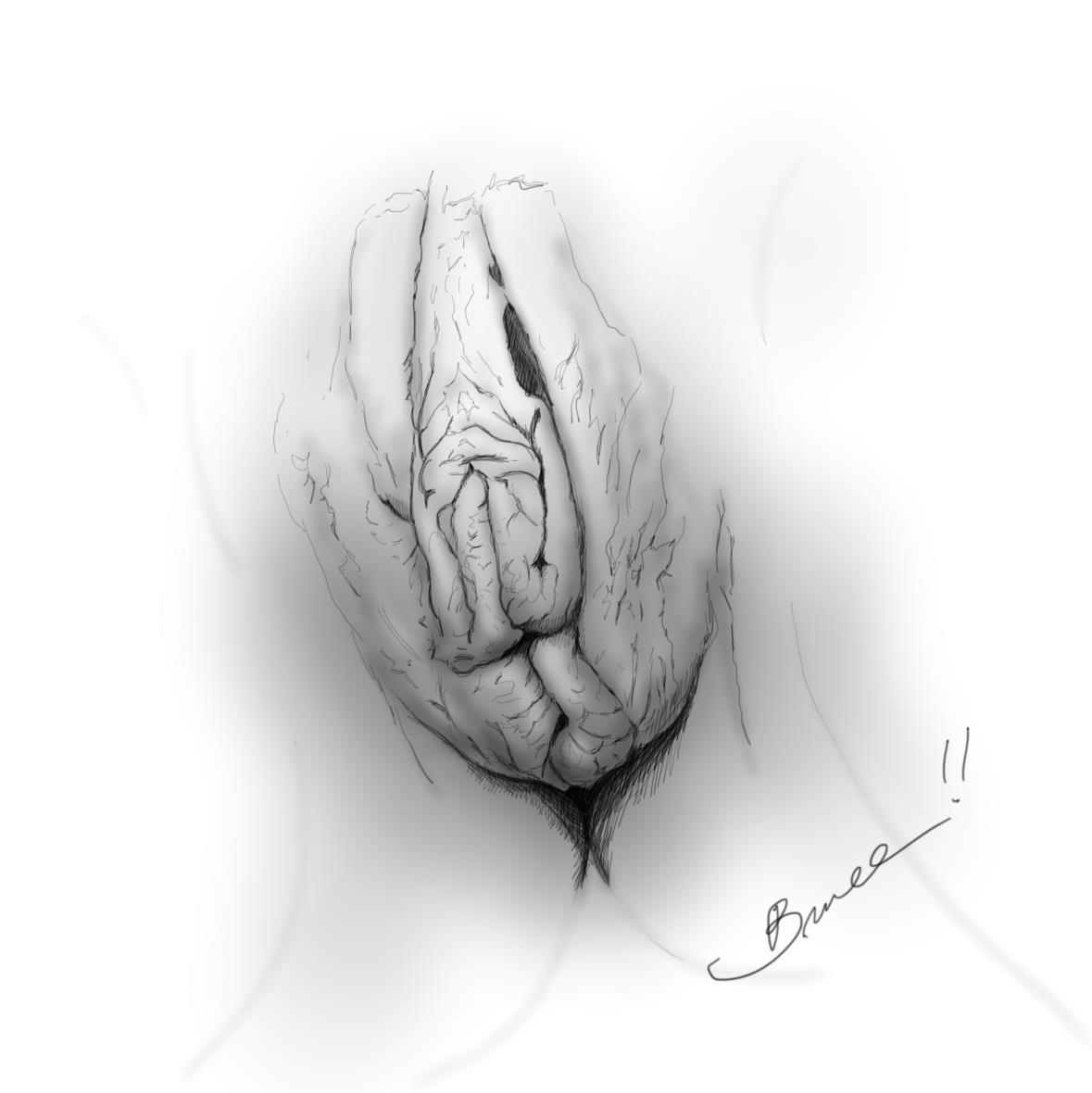 влагалище подробный рисунок - 14