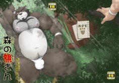 Bara – Bear in Woods