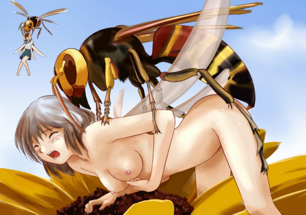 Cartoon Insects Porno